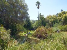Stellenbosch Botanical Garden