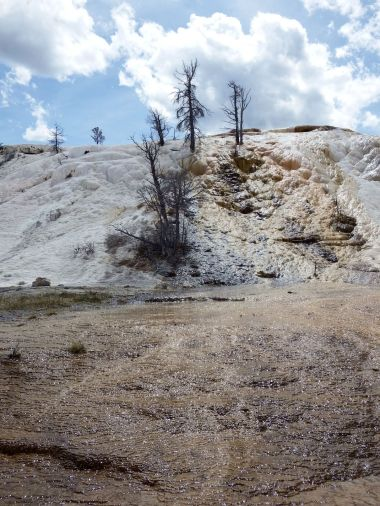 Yellowstone National Park - Mammoth Springs