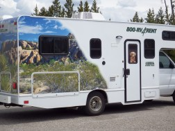 RV with built-in dog!