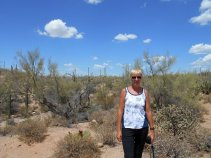 Saguaro National Park - VERY HOT