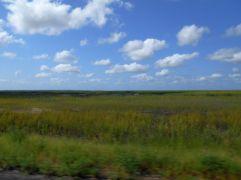 On the way to Tybee Island