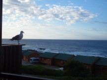 Storms River Mouth Rest Camp - Chalets