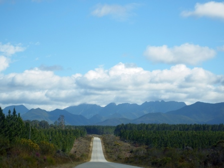 On the way to Jeffrey's Bay