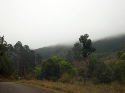 Travel - Views