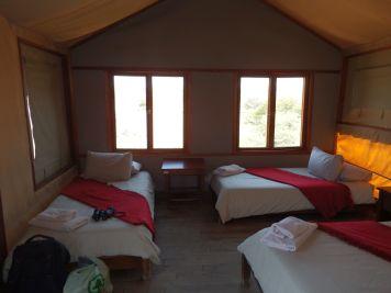 Kgalagadi Transfrontier Park - Kalahari Tented Camp