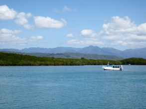 Port Douglas - Harbour View