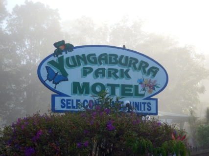 Yungaburra - Morning Mist