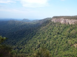 Springbrook Mountain, QLD