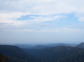 Springbrook Mountain, QLD
