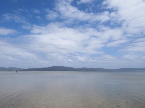 Wallis Lake, NSW