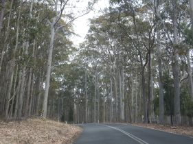 On the way to Merimbula