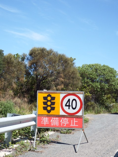On the way to Apollo Bay