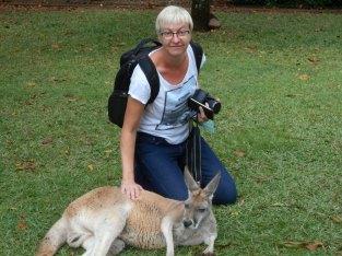 Australia Zoo - Kangaroo