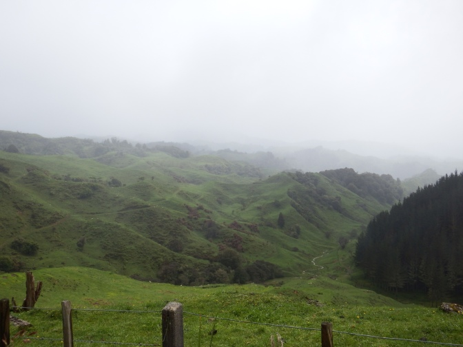 Near Waitomo