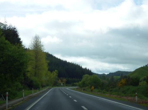 On the way to Wai-O-Tapu