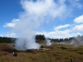 Craters of the Moon, NZ