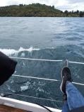 Lake Taupo, NZ