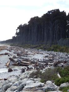 Bruce Bay, NZ