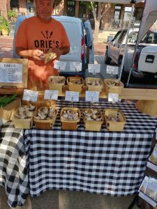 Farmer's Market - Wichita